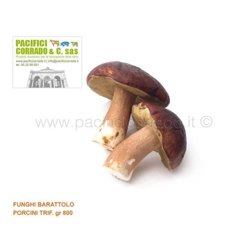 Funghi Porcini trifolati guarniture gr 800